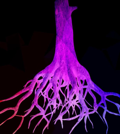 """Graphic image, """"Rooted,"""" by Kirk McConnell"""